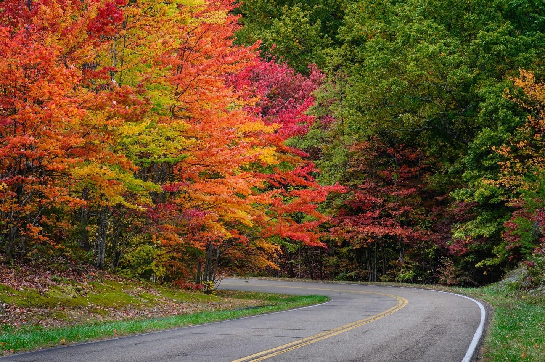 Skyline Drive – The Best Place to Enjoy Fall Foliage