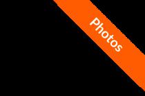 photo-ribbon